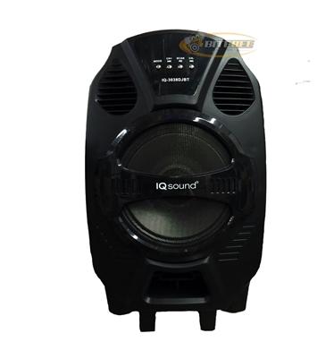 Iq Sound Iq 3038djbt Rechargeable Speaker W Bluetooth Fm
